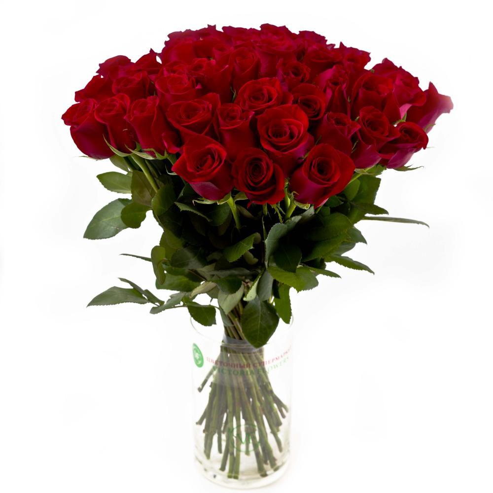 51 красная роза 40 см производство Эквадор