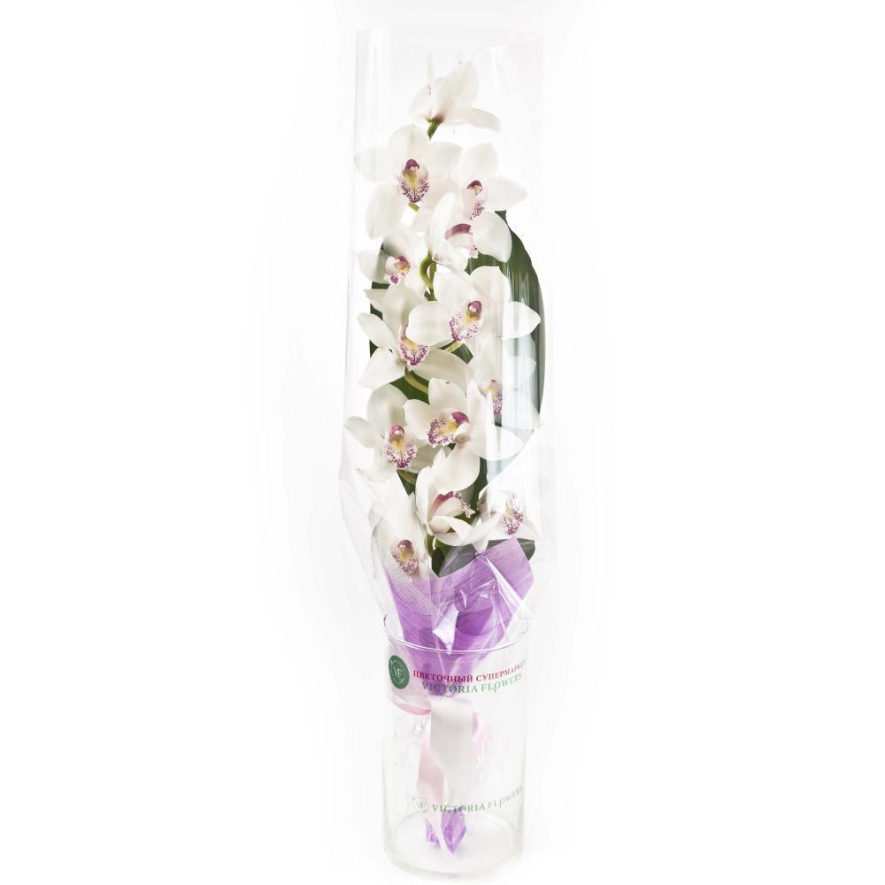 Букет из белой орхидеи и листьев аспидистры