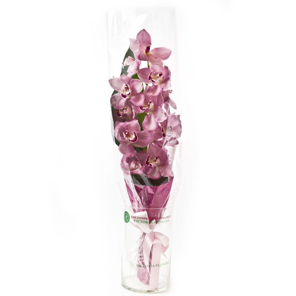 Букет из розовой орхидеи и листьев аспидистры