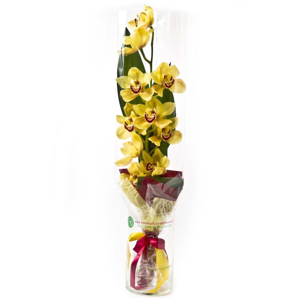 Букет из желтой орхидеи и листьев аспидистры