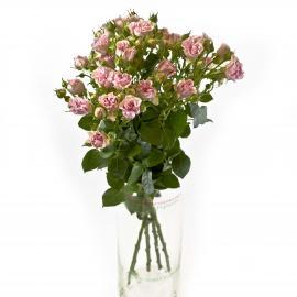 5 розовых кустовых роз 40 см производство Кения
