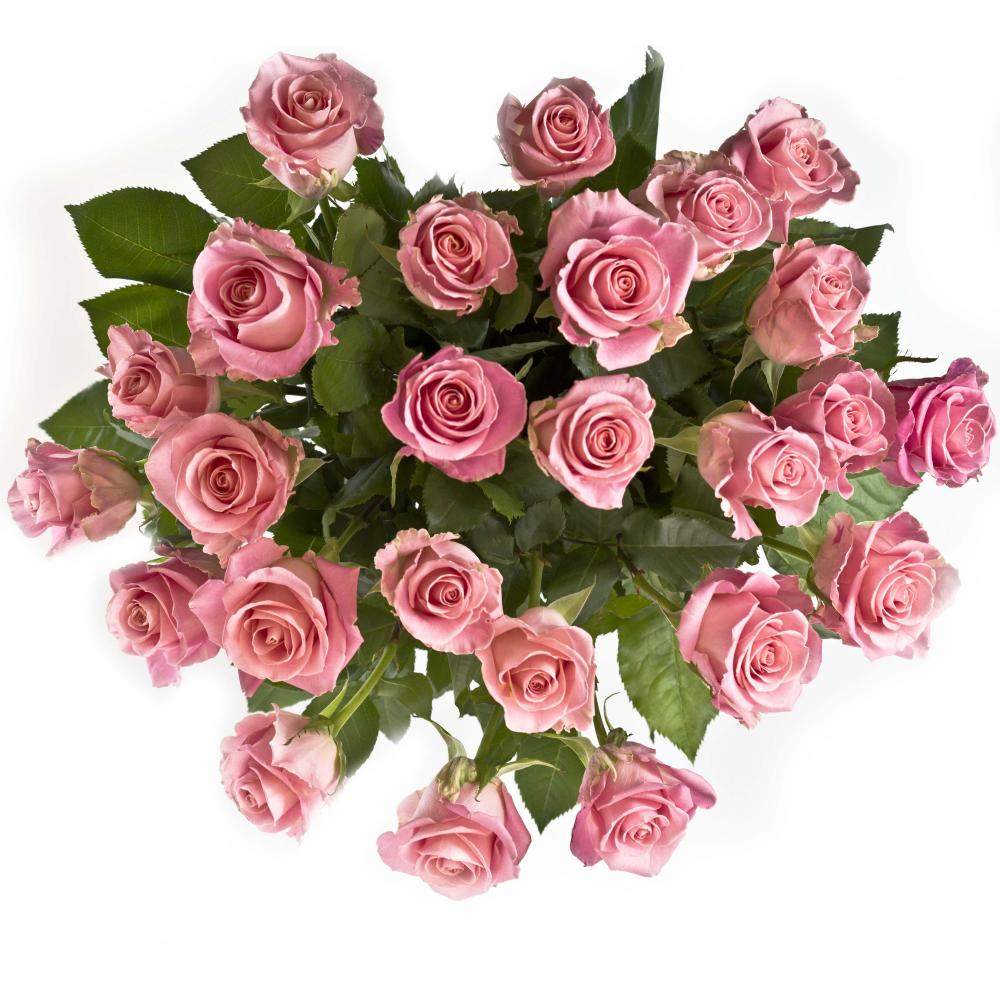 25 розовых роз 40 см производство Эквадор